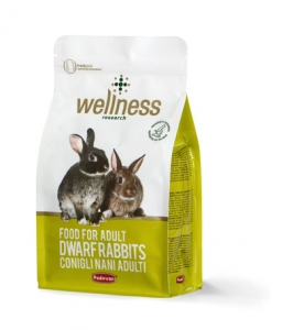 Wellness adult dwarf rabbits