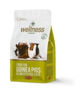 Wellness guinea pigs