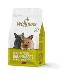Wellness young dwarf rabbits