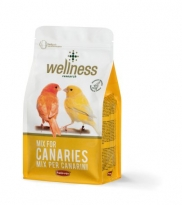 Wellness canarini