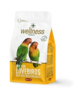 Wellness lovebirds