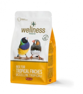 Wellness tropical finches