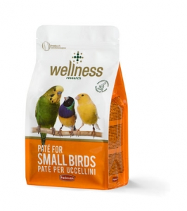 Wellness paté for small birds
