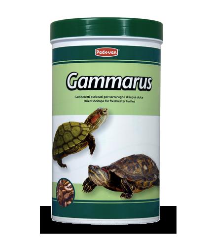 Alimenti per pesci rossi pesci tropicali tartarughe for Accessori per acquari